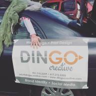 Dingo Creative